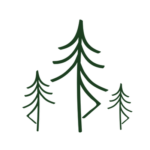 Spruce Yoga